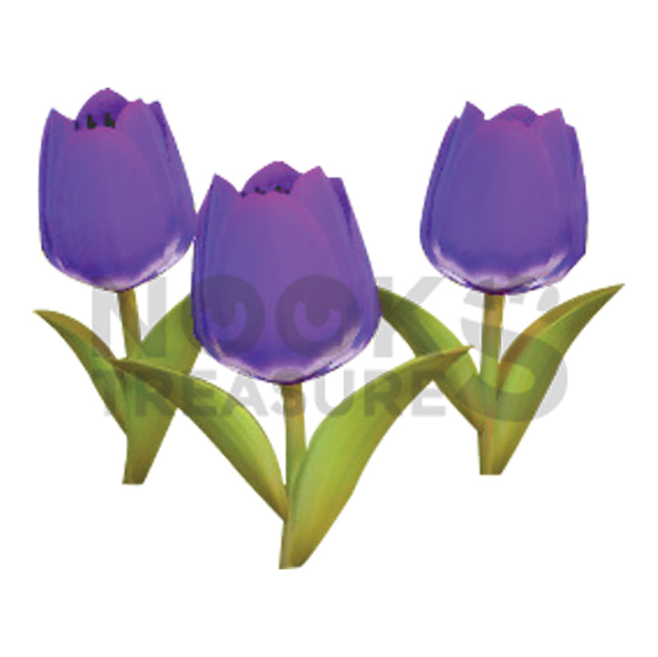 Purple-Tulip Plant