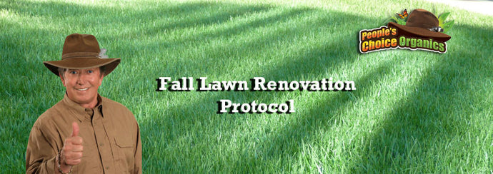 Renovating Your Cool Season Lawn