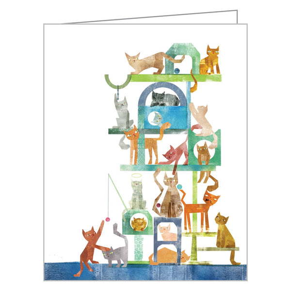 Boxed Notecards Cats
