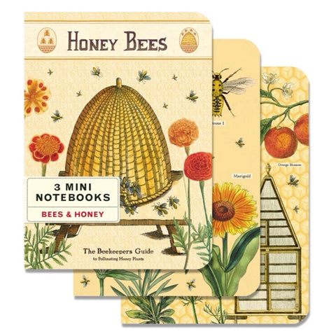 3 Mini Notebooks Bees & Honey