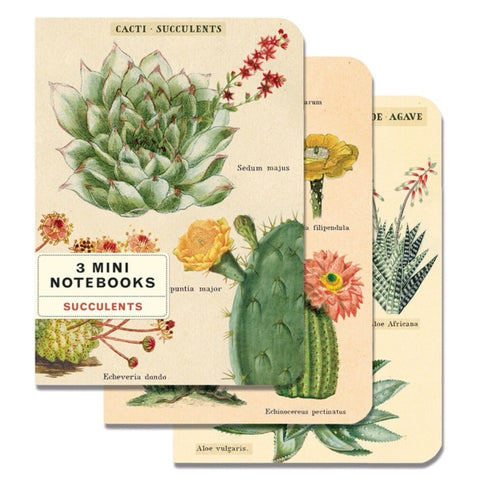 3 Mini Notebooks Succulents