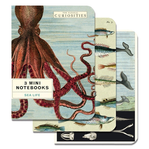 3 Mini Notebooks Sealife