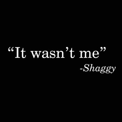 It Wasn't Me Shaggy - DonkeyTees