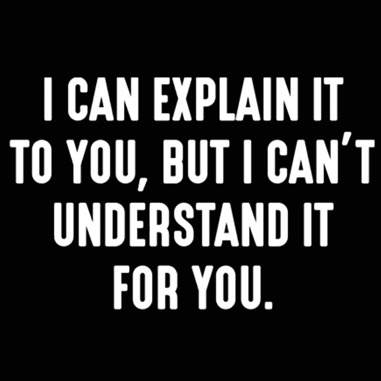 I Can't Understand It For You - DonkeyTees