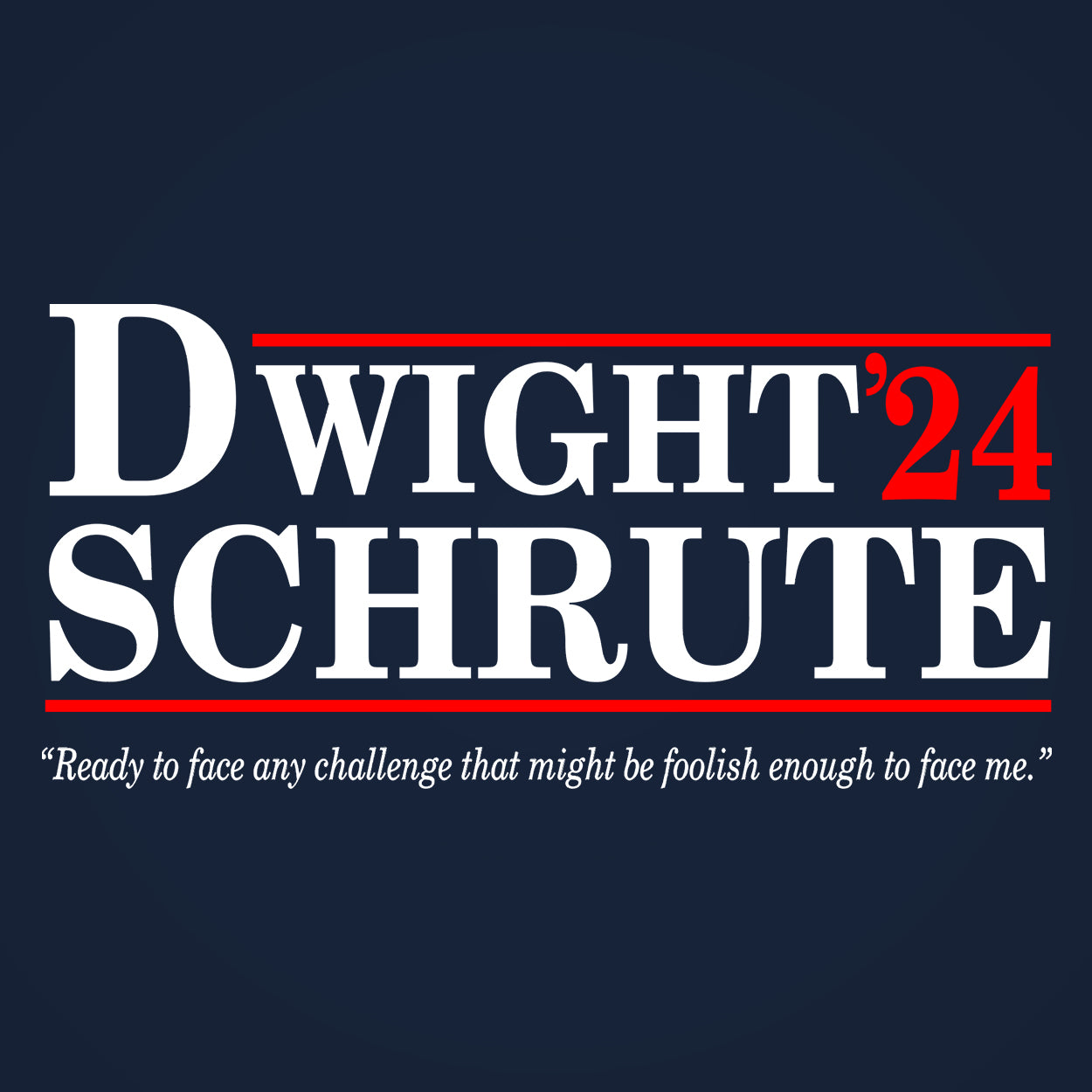 DWIGHT SCHRUTE 2024 Election