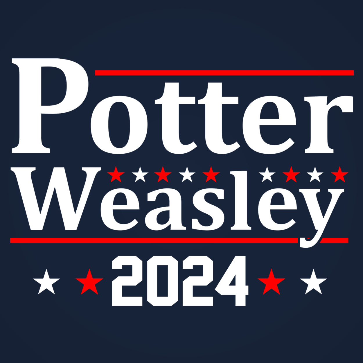 Potter Weasley 2024 Election