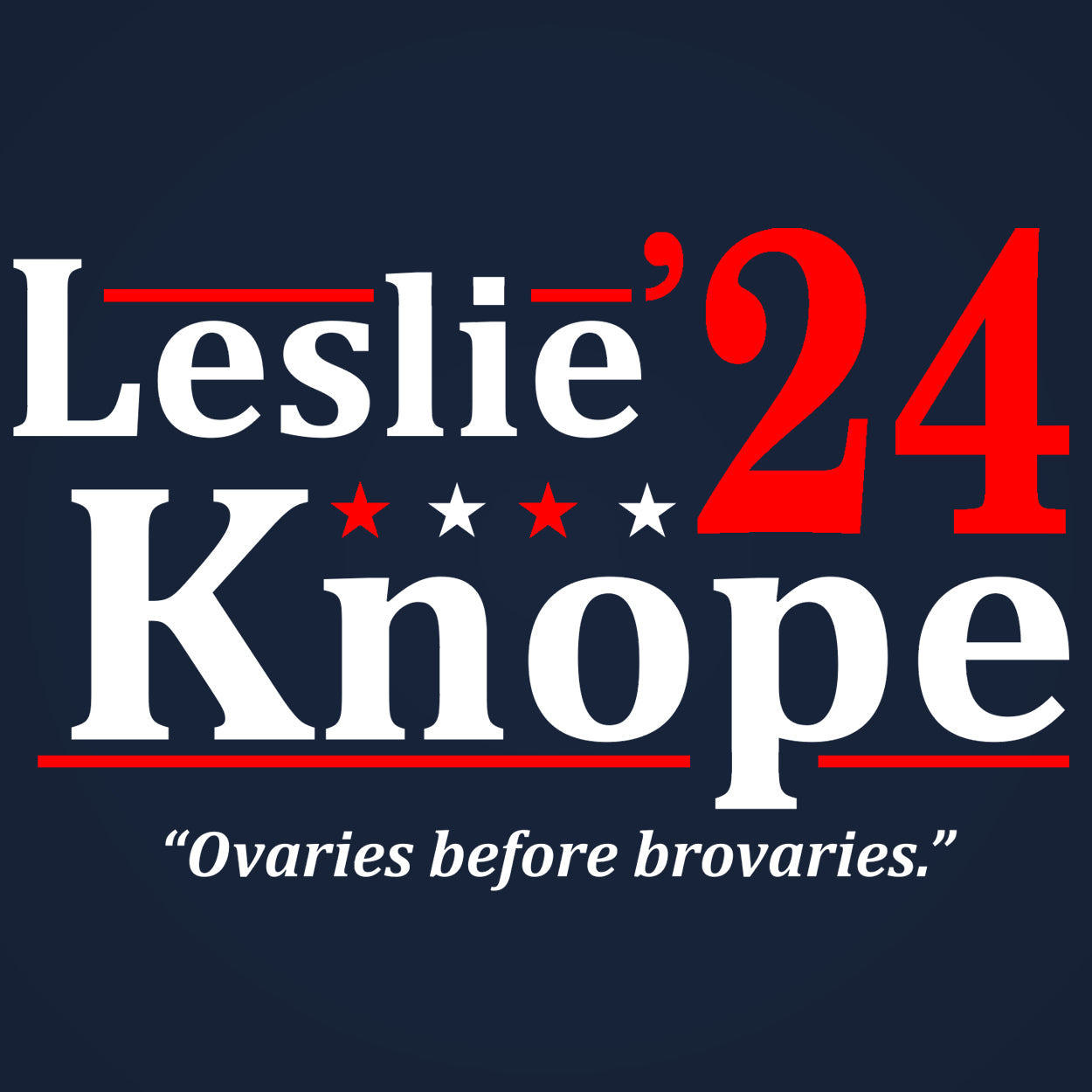 LESLIE KNOPE 2024 Election