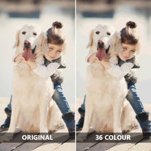 Load image into Gallery viewer, Custom Photo DIY Painting By Numbers 36 Colors - 30*50cm