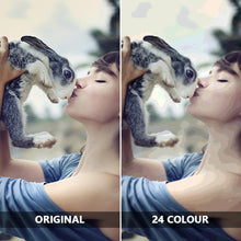 Load image into Gallery viewer, Custom Photo DIY Painting By Numbers 36 Colors - 40*40cm