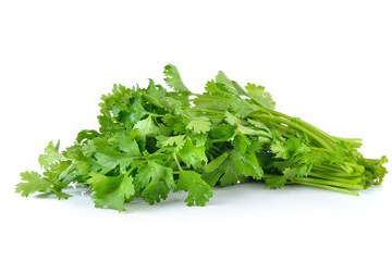Fresh Coriander leaves (Hara Dhaniya Patti)