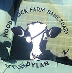 Dylan's Decal