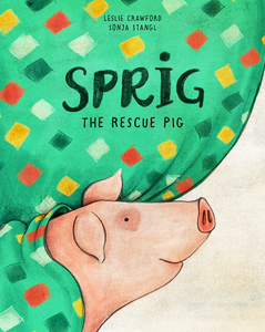 Sprig - the Rescue Pig