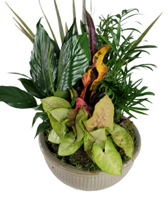 "Ceramic 10"" Assorted Foliage"