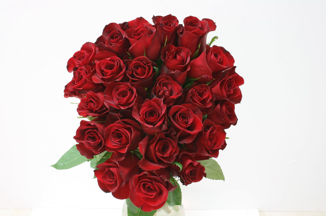 Roses 25 Premium Long Stem Red