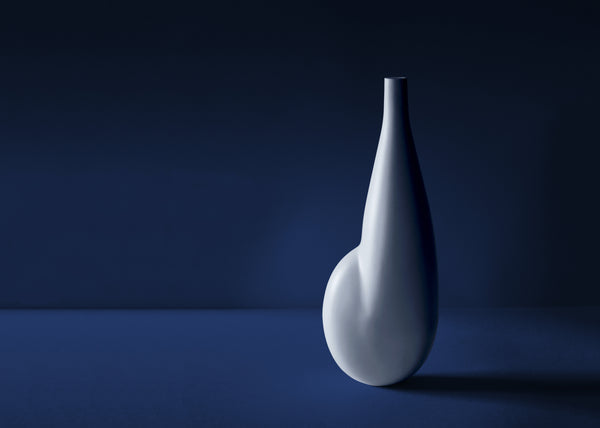 Contemporary porcelain vase
