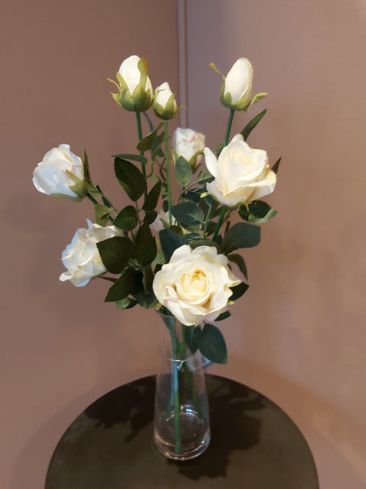 Serenity and Beaker in Cream Arrangement in a Glass Vase - Decor Interiors -  House & Home