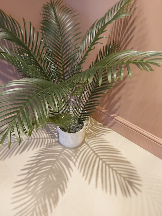 Faux Tropical Fern in a Cream Mesh Ceramic Pot - Decor Interiors -  House & Home