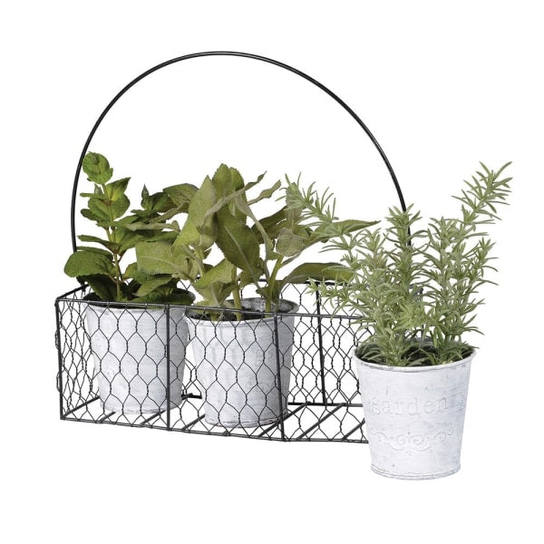 Set of 3 Assorted Herbs in Tins in Metal Carrier - Decor Interiors -  House & Home