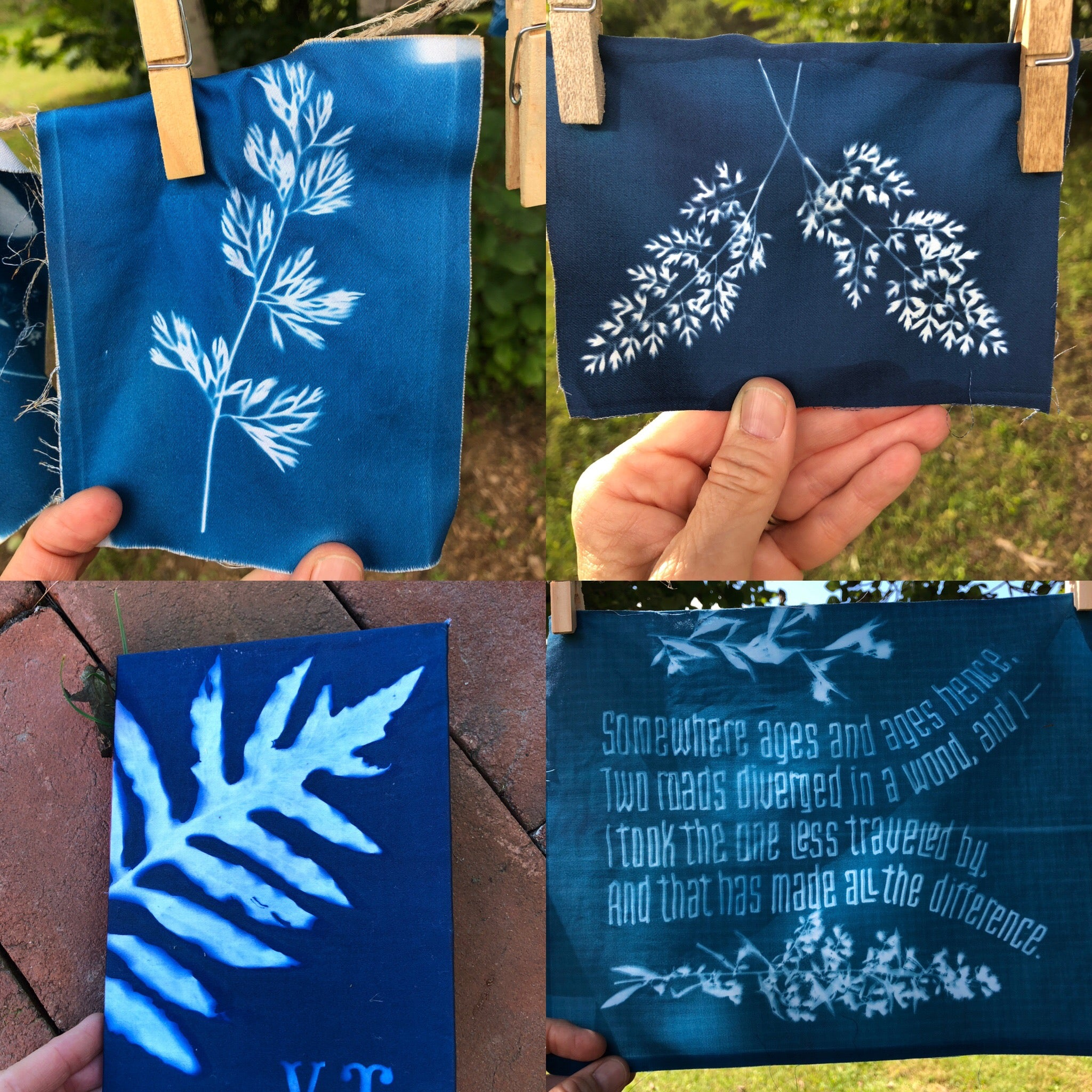 Into the Blue: Explorations with Cyanotype with Molly Meng / Saturday, June 8th / 10-2pm