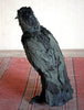 Edwardian Bird with Ann Wood / Saturday and Sunday, October 12th and 13th / 10-4pm
