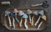 Stitched Mushroom with Ann Wood / Wednesday, October 16th / 6-9pm