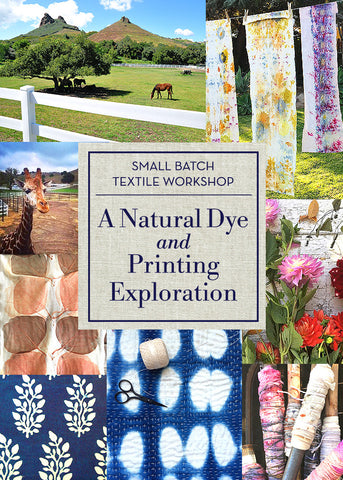 Small Batch Textile Workshop: A Natural Dye and Printing Exploration / May 6th and 7th 10-4pm SOLD OUT