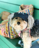Pet Baseball Hat