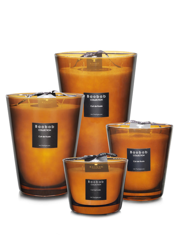 Baobab Collection Scented Candle- Cuir de Russie