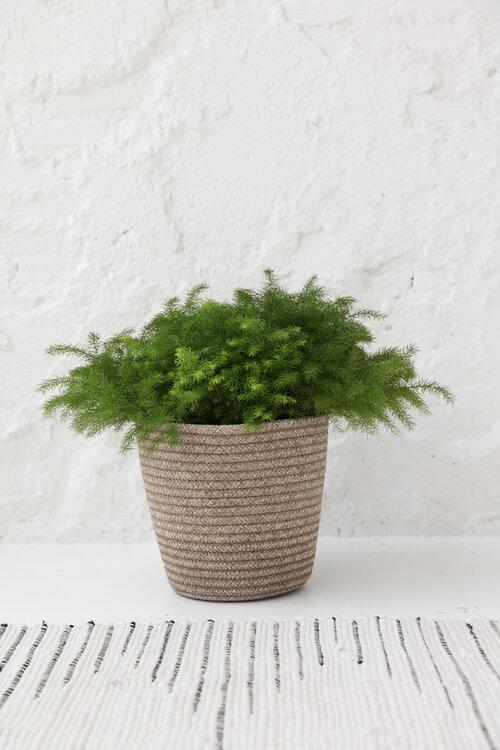 Taya Living Mini Gaby Basket