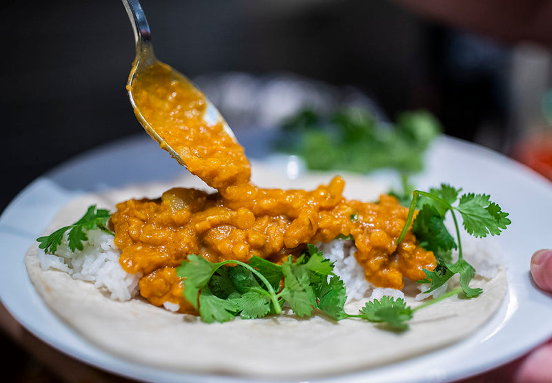 red lentil coconut curry on a tortilla