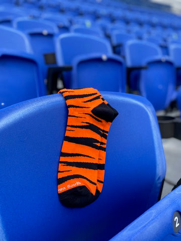 Bengal Stripe Socks