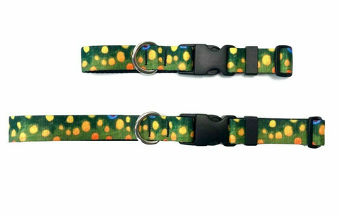 Brook Trout Dog Collar