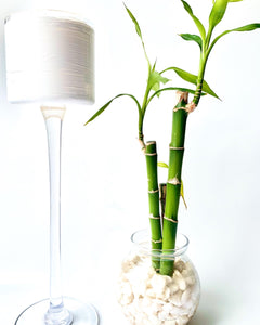 Long Stem Candle