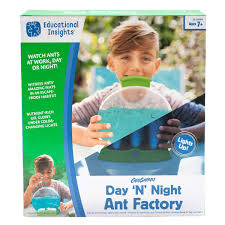 Day & Night Ant Factory