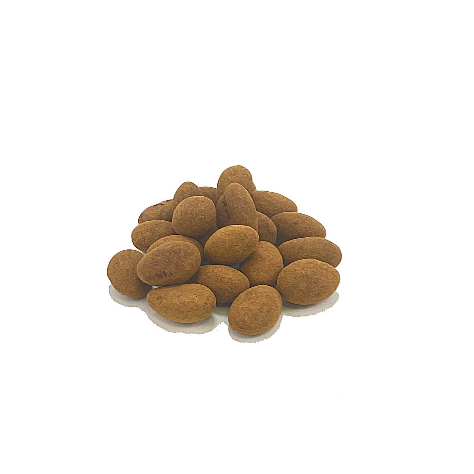 Cinnamon Chocolate Almonds 100 Gr