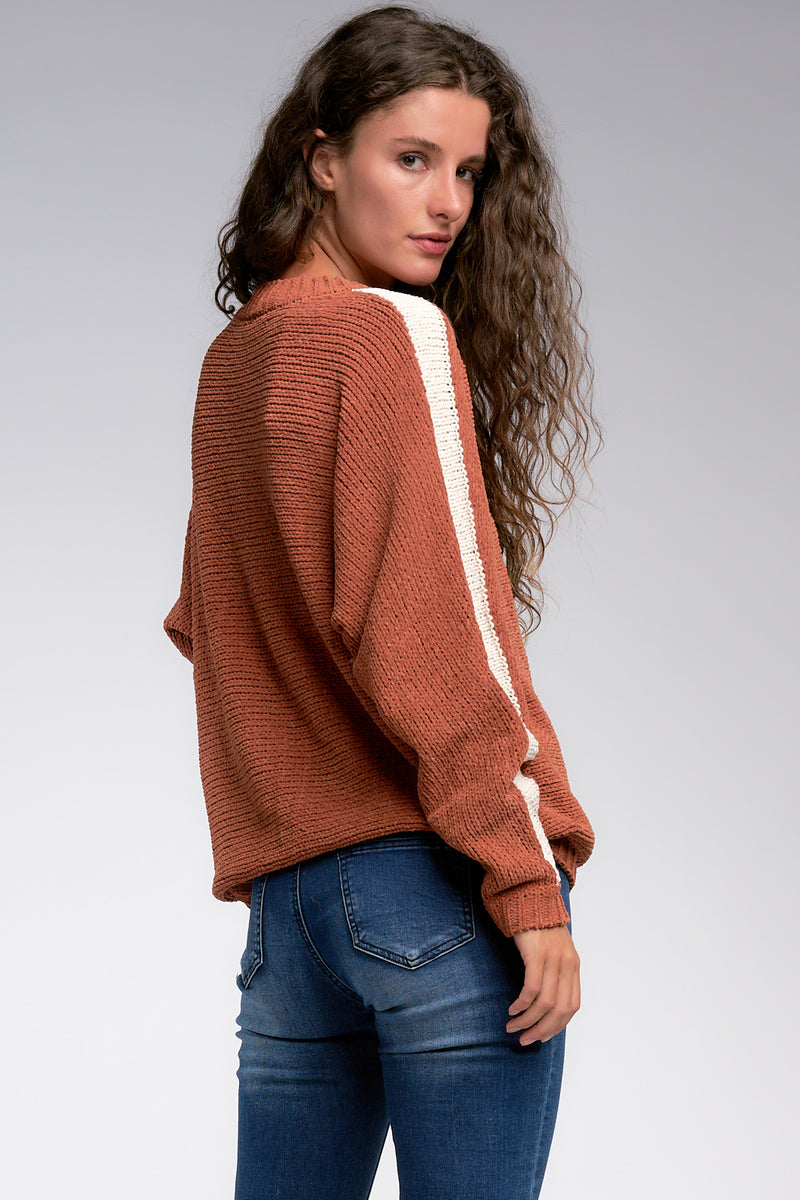 Carmel Stripe Sleeve Sweater