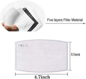 Pm2.5 Activated Carbon Filters 10 Pack