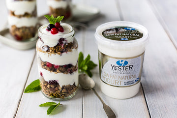 Low fat natural yoghurt- Yester Dairy East Lothian 500g