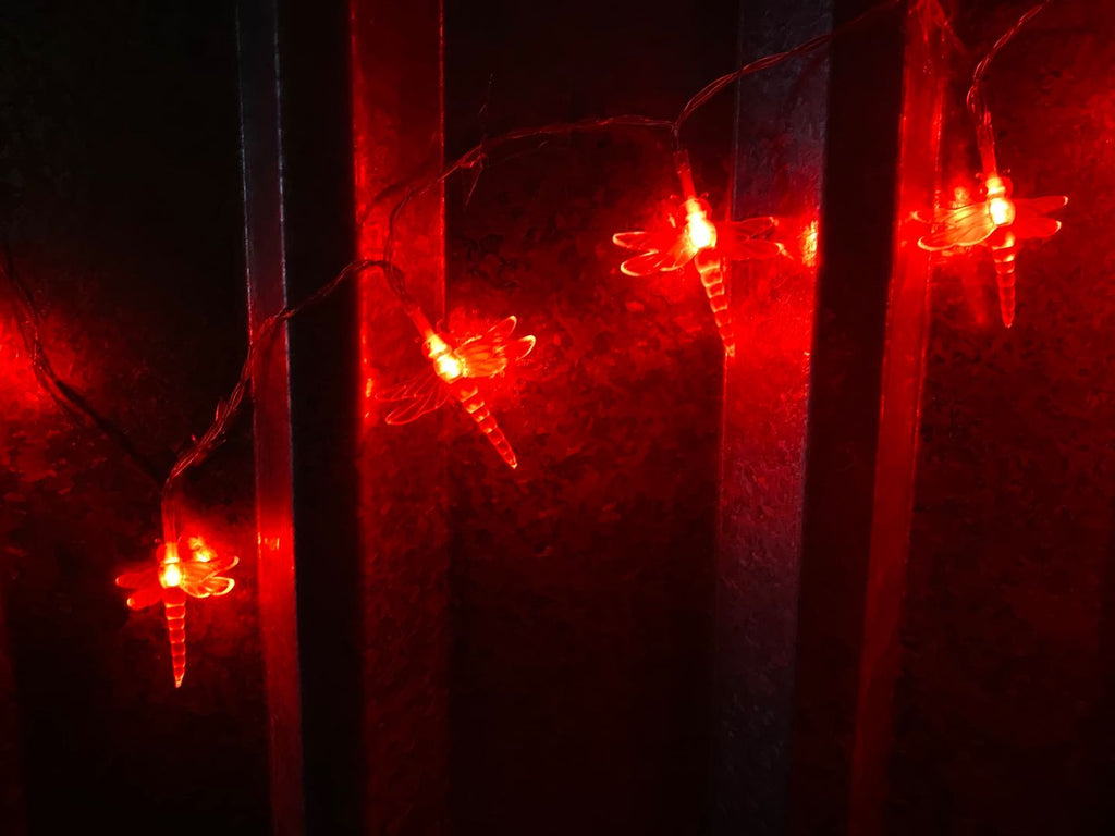 USB Powered 20LED 2M Dragonfly Red LED Fairy Lights