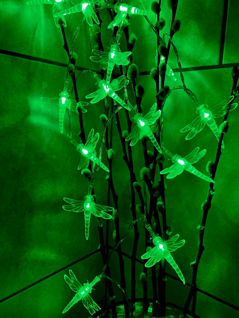 USB Powered 20LED 2M Dragonfly Green LED Fairy Lights