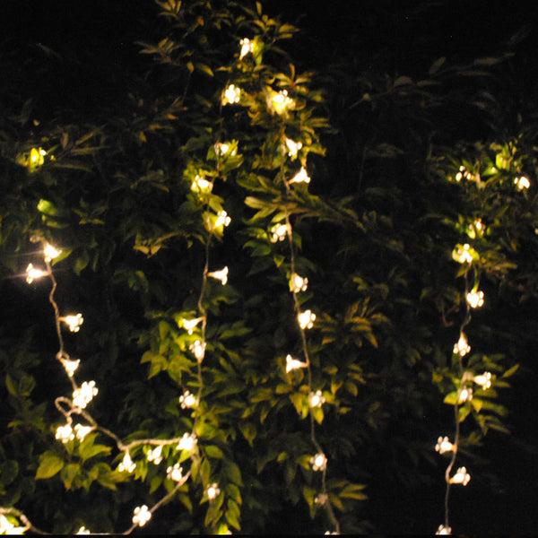 Waterproof Cherry Blossom Summer Flower 10M 100 LED Warm White Colour Fairy Lights