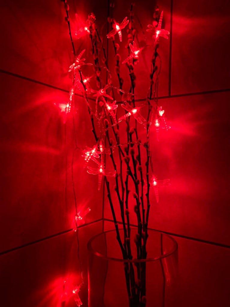 Battery Powered Dragonfly 20/40LED Red Fairy String Lights