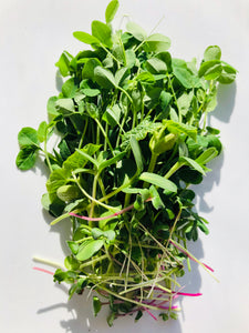 bunch of reg and green microgreens on white surface