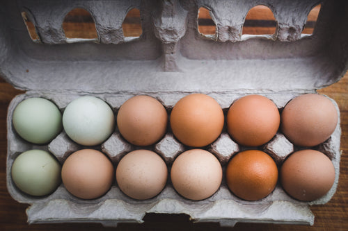 multicolored eggs stored in an egg carton
