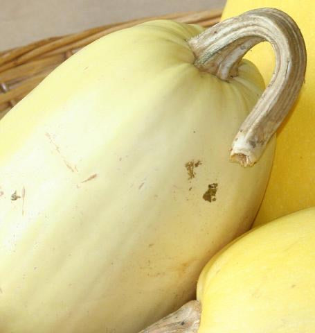 yellow spaghetti squash in wicker basket