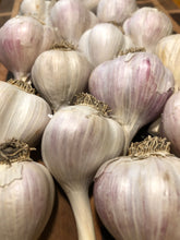 Load image into Gallery viewer, garlic bulbs lined up agains a wooden board