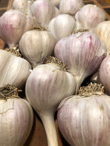garlic bulbs lined up agains a wooden board