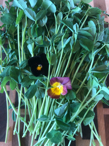 Pea and edible flower (110 grams)