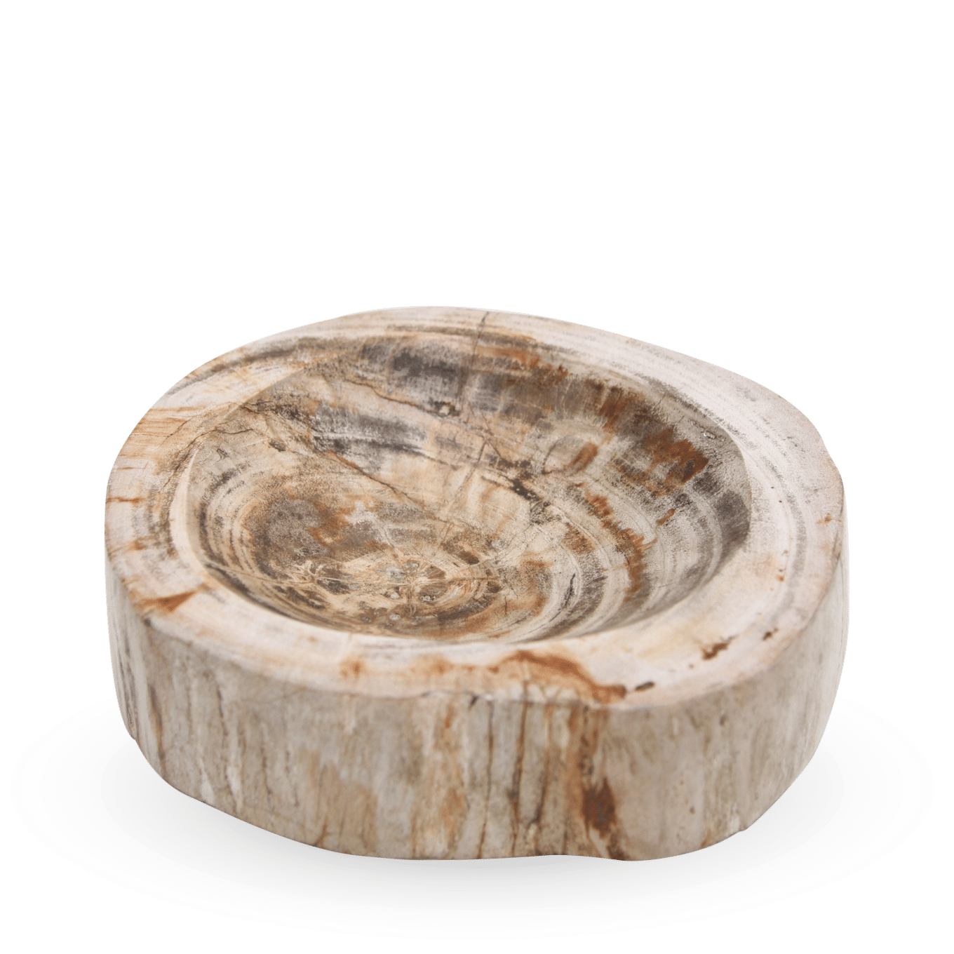 Petrified Bowl