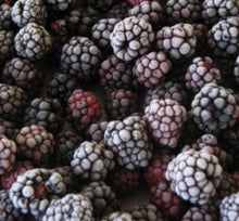 Load image into Gallery viewer, Moras Orgánicas Congeladas   (Organic Frozen Blackberries) kg